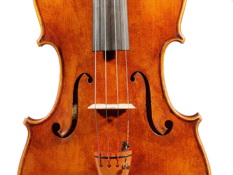 viola Chiara 2008